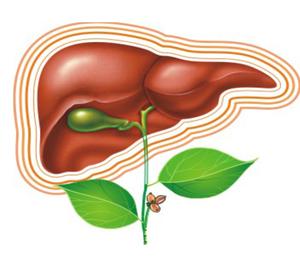 Народные средства помогающие побороть гепатит