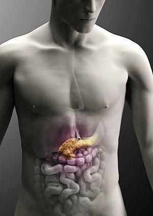 Как уберечь поджелудочную железу