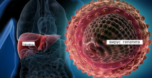 Стадии вируса гепатит