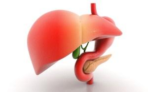 Как определить заболевания печени