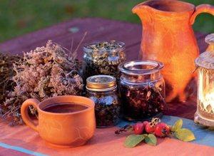 Облегчить страдания больного  раком печени помогут также разные лекарственные травы.