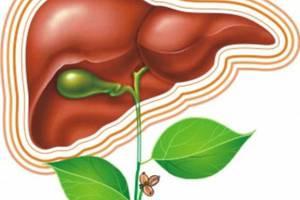 Лечение вирусных гепатитов в киеве